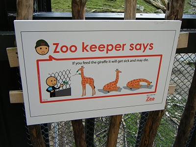 what not to do at the zoo things i see