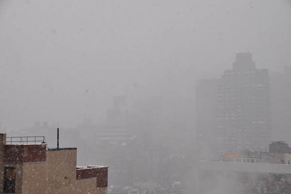 New York Snow 01/2010