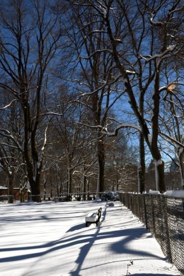 CentralPark_snowday_06