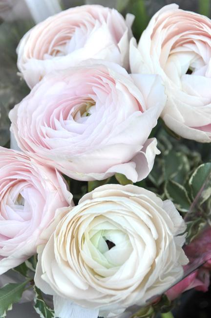 valentines_flower1